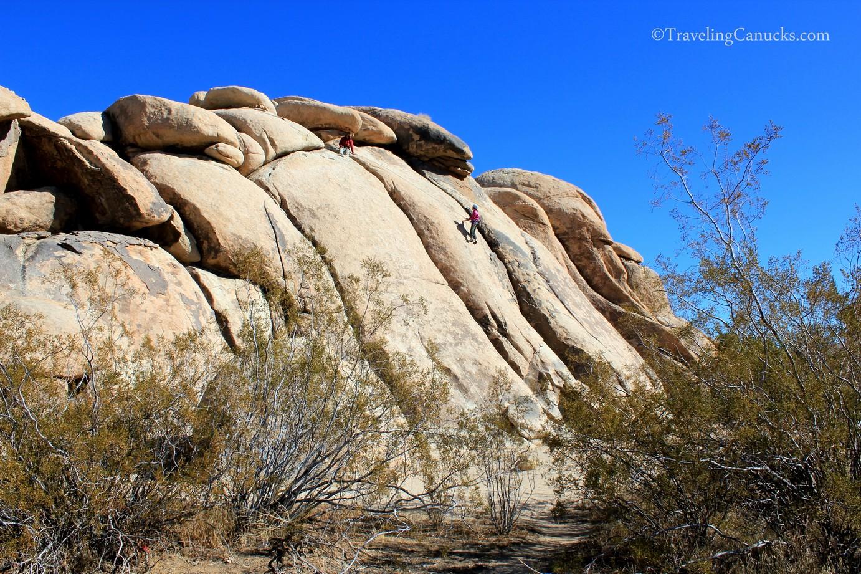 Rock Climbing, Joshua Tree NP