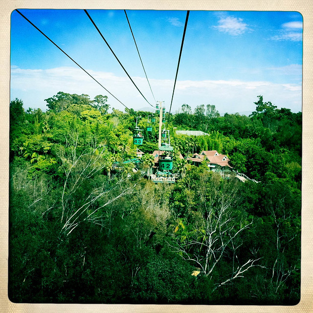 Photo:Zoo Cable Car By Purblind
