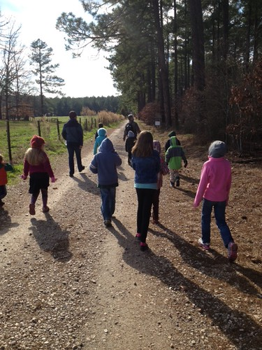 Unschooling Nature Walk
