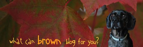 2009.10 Blog Header