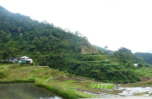 Luzon-Banaue-Batad (6)
