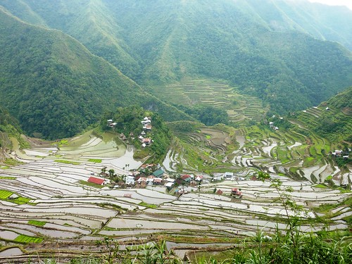 Luzon-Batad (102)