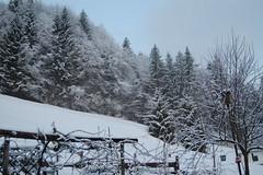 Inzell 2012 ( März ) ein Wintermärchen