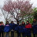 1010311春櫻菁艷竹子湖生態活動(周金陽攝)96