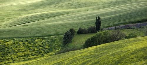 landscape tuscany toscana