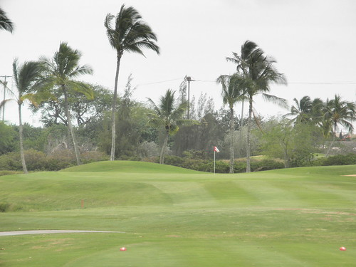 Hawaii Prince Golf Club 314