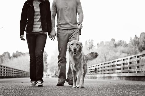 Collin & Megan 883