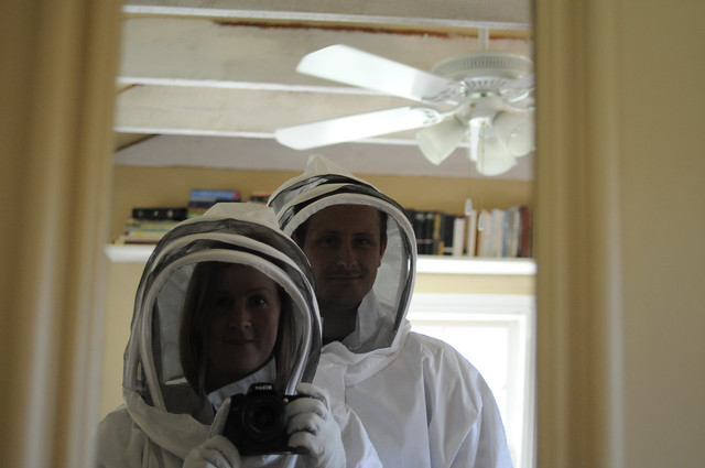getting ready for bees