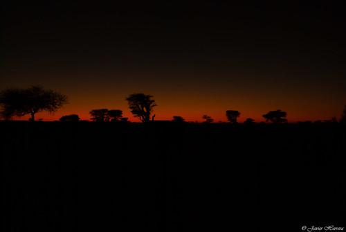 sun color sahara nature evening sand desert natural dune paisaje arena morocco desierto duna marruecos acacias javierherrera aidar