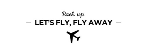 flyfly
