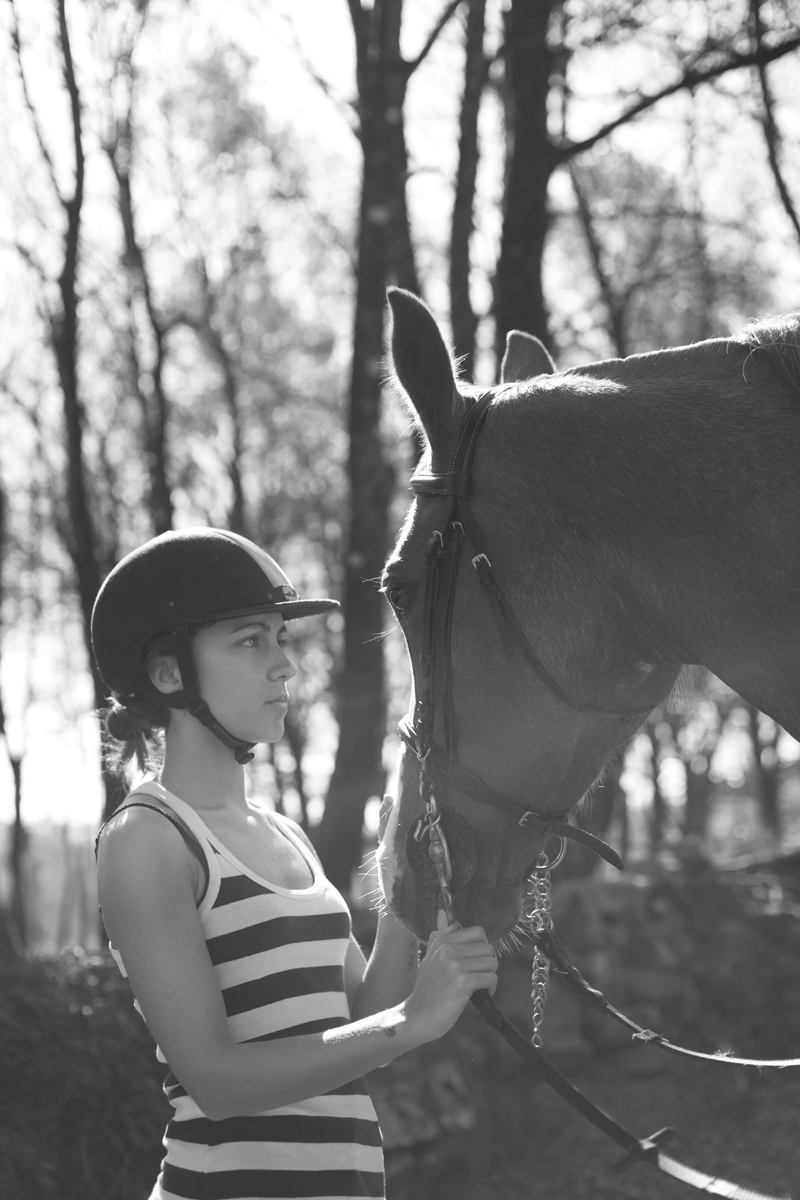 Horse-006