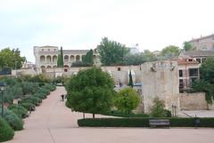 Palacio del Infantado (2)