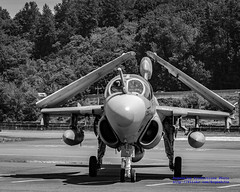 PROWLER LOOKING FOR A PARKING SPOT