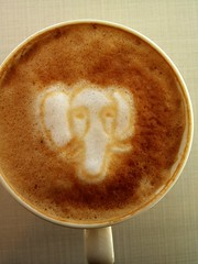 Today's latte, PostgreSQL.
