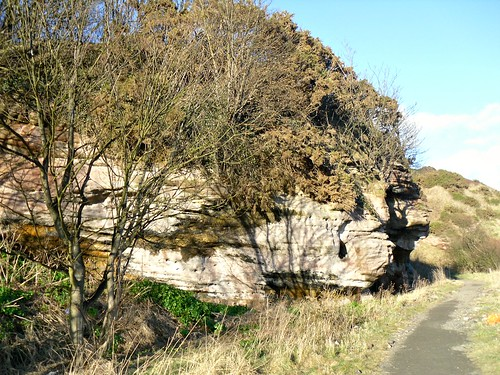 Rock face at East Wemyss.