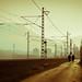 Urban silhouette life