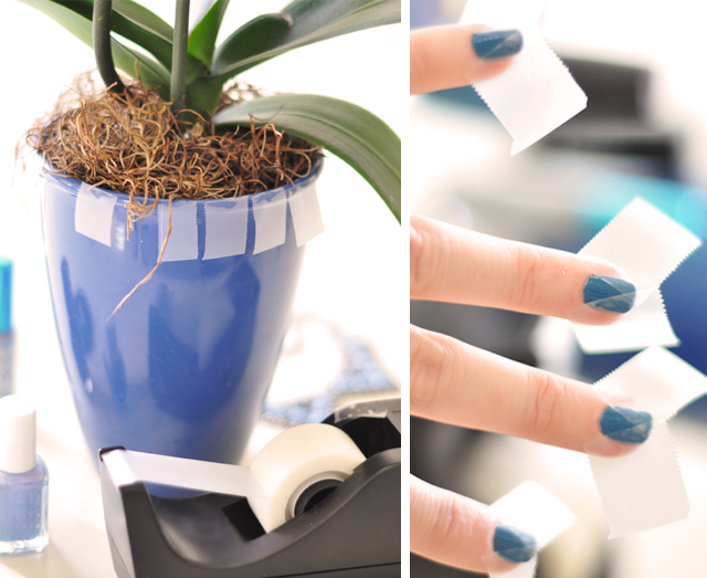 blue potted plant-taped nails triangle diy