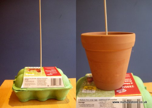 mothers day craft idea
