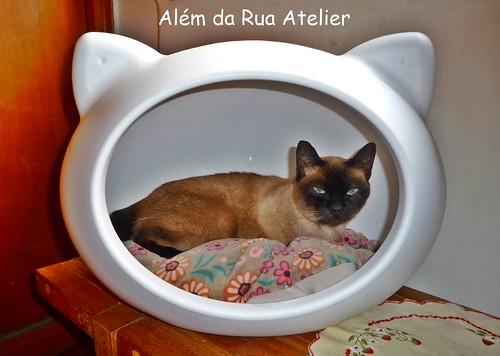 Casa para gatos, que ganhei num sorteio!!!