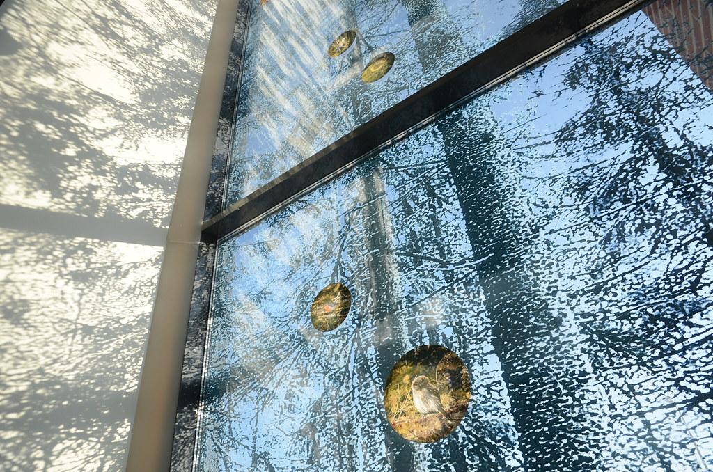 Kotimetsä / Hemskog / Home Forest - Tuula Lehtinen - Flickr