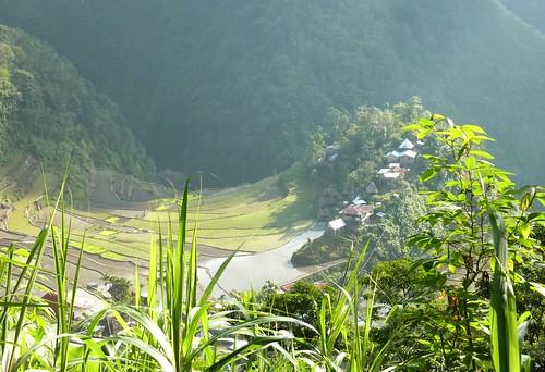 Luzon-Batad (74)