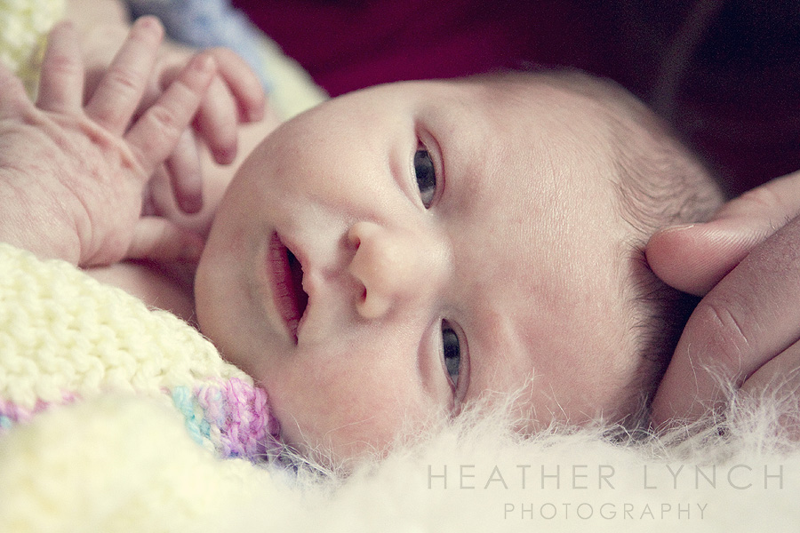 HeatherLynchPhotographyCC3