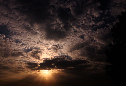 Sunshine,  Sunshine You Are Sublime..