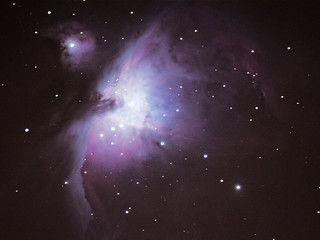 Really the best Orion Nebula