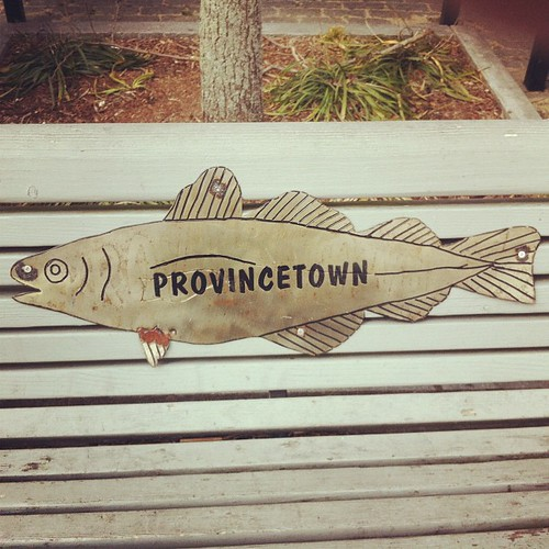 Provincetown fish