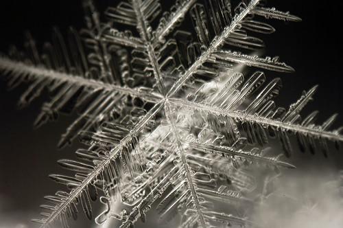 [フリー画像素材] バックグラウンド, 雪の結晶 ID:201202150600