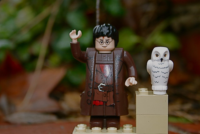 Image of Harry Hagrid