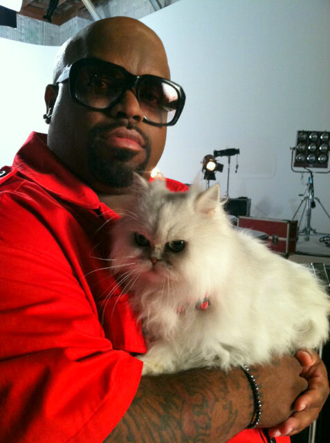 cee lo and purrfect
