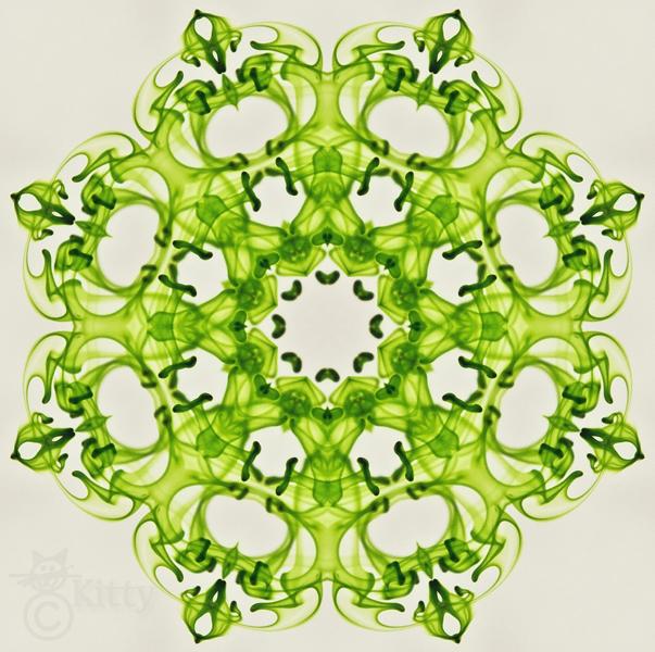 Green Kaleidoscope.