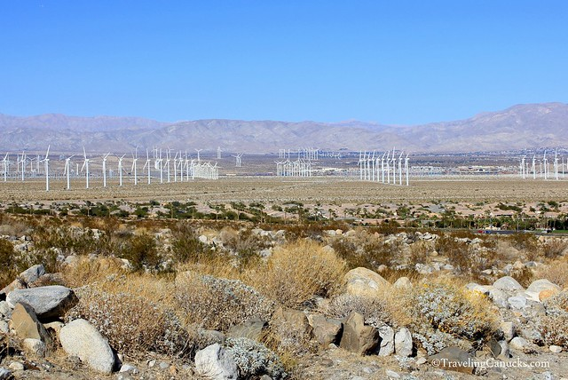 Wind Farm in the Coachella Valley