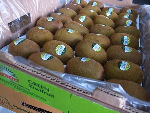 奇異果 ZESPRI 紐西蘭 30顆箱