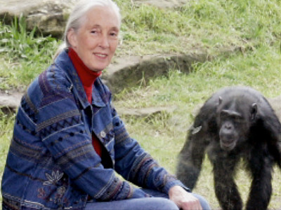 1120330742_7456248001_Bio-Biography-Jane-Goodall-SF-142447265001
