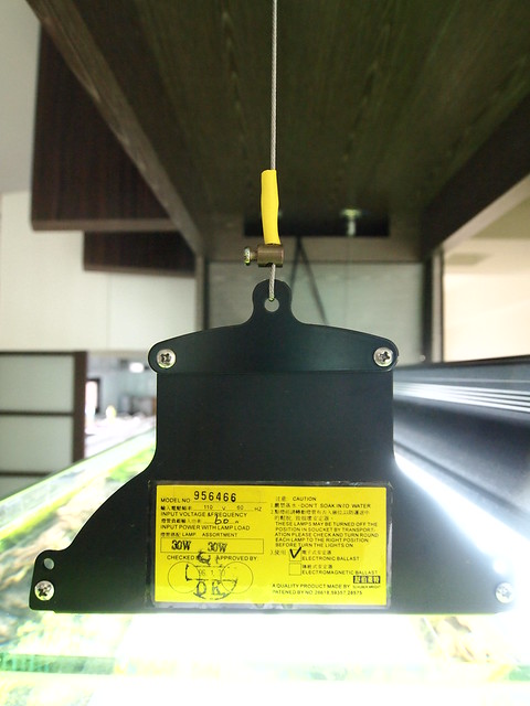 P3095178
