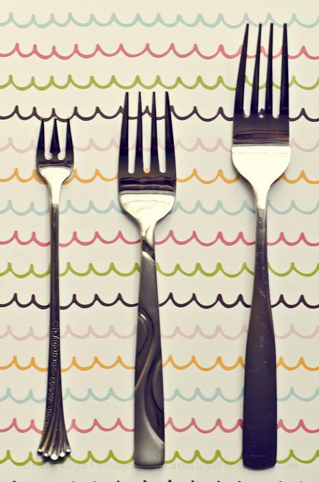 3-16-12 - Forks