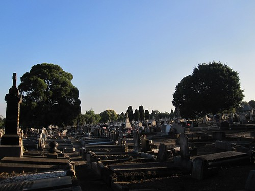 Roman Catholic section at north of Melbourne General Cemetery 52/12/1 by Collingwood Historical Society