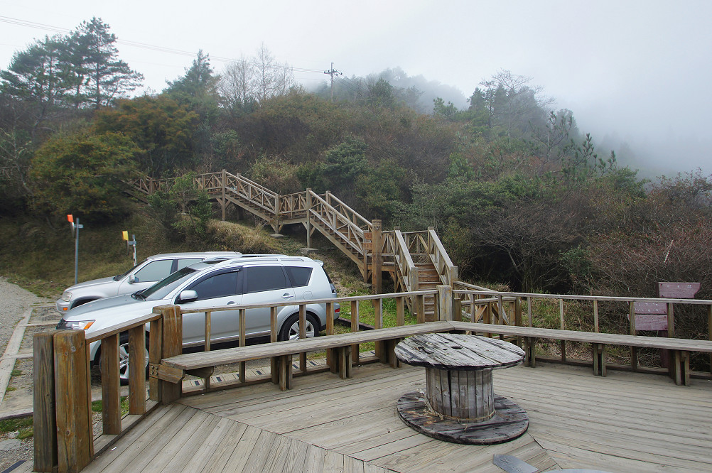 觀霧巨木步道-067