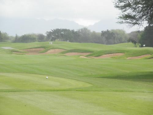 ewa beach Golf Club 109