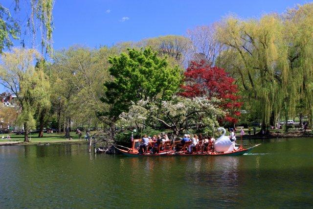 Spring 2012 swan boats public gardens flickr photo for 7194 garden pond