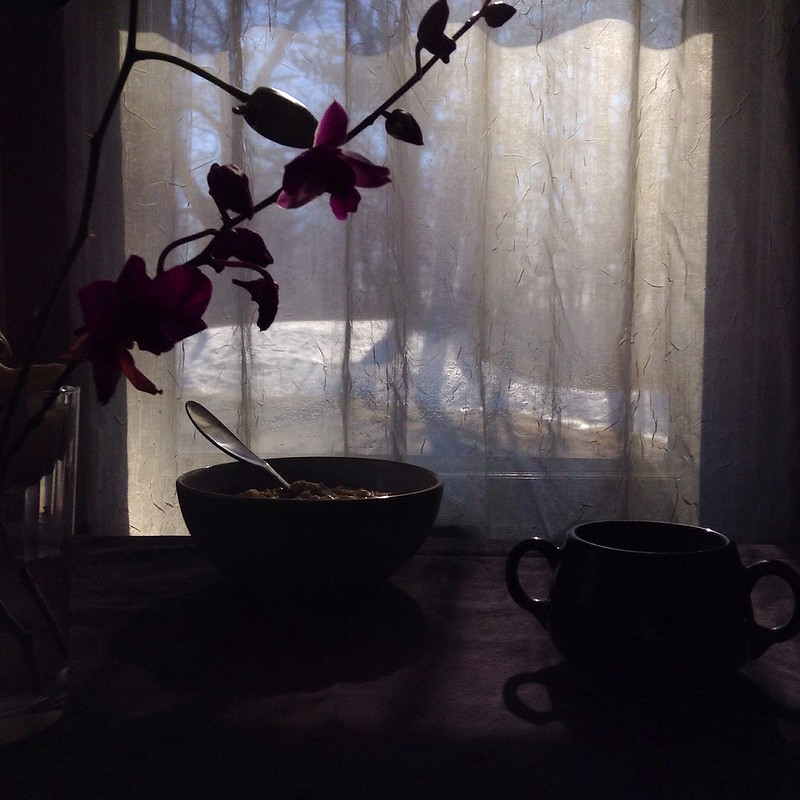 breakfast in partial silhouette