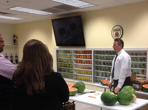 A watermelon demonstration at the Produce Safety University