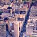Vertical Panorama by Tony Shi Photos