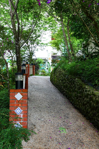橄欖樹咖啡民宿