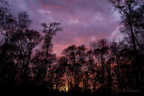 sunset canon florida jacksonville sooc