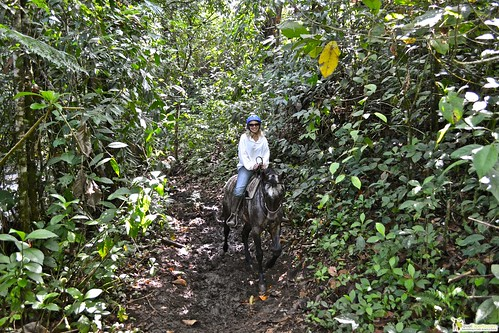 6804093170 475e991ffd Horseback Riding Tour to Waterfalls in Arenal, Costa Rica