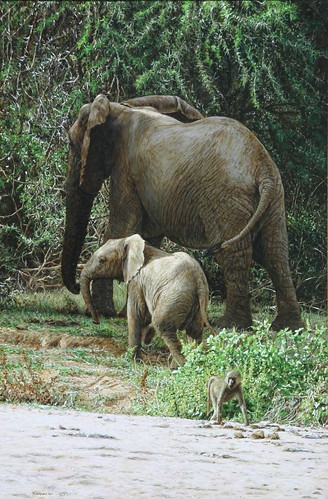 "'Elephants and Baboons' oil on board 17"" x 11½"