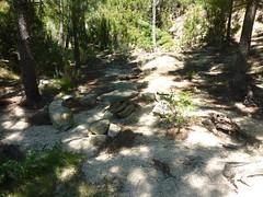 Sur le sentier de Mela : l'aire de pique-nique